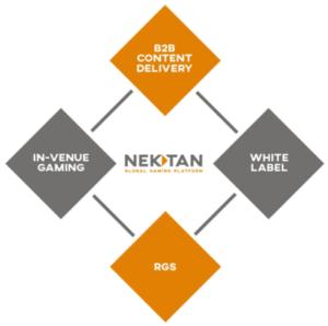 nektan services